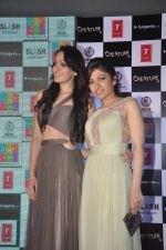 Khushali Kumar, Tulsi Kumar on ramp to promote Creature 3d film in R City Mall, Mumbai on 12th Aug 2014 (72)_53eb731d1b4b0.JPG