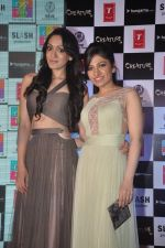 Khushali Kumar, Tulsi Kumar on ramp to promote Creature 3d film in R City Mall, Mumbai on 12th Aug 2014 (76)_53eb7322e2e9f.JPG