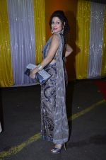 Tanaaz Curim at SAB Ke anokhe awards in Filmcity on 12th Aug 2014 (155)_53eb66a527f36.JPG