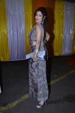 Tanaaz Curim at SAB Ke anokhe awards in Filmcity on 12th Aug 2014 (156)_53eb66a68a1ff.JPG