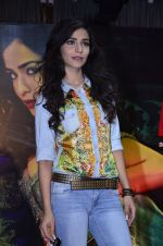 Humaima Malik at Raja Natwarlal club promotions in Enigma on 13th Aug 2014 (767)_53ec5e8c84bb3.JPG