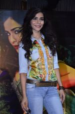 Humaima Malik at Raja Natwarlal club promotions in Enigma on 13th Aug 2014 (769)_53ec5e8f2512f.JPG