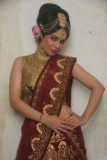 Kavita Verma at Rohit Verma_s his newest collection Vrindavan on 14th Aug 2014 (86)_53ede3f4891c1.JPG
