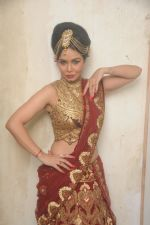Kavita Verma at Rohit Verma_s his newest collection Vrindavan on 14th Aug 2014 (88)_53ede3debc552.JPG