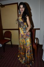 at Love In Cairo film launch in Raheja on 16th Aug 2014 (21)_53f09ab2cfe1a.JPG