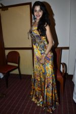 at Love In Cairo film launch in Raheja on 16th Aug 2014 (22)_53f09ab44e462.JPG