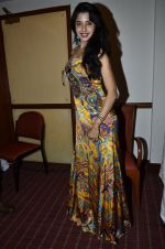 at Love In Cairo film launch in Raheja on 16th Aug 2014 (23)_53f09ab5cf306.JPG