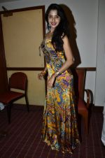 at Love In Cairo film launch in Raheja on 16th Aug 2014 (24)_53f09ab750e62.JPG