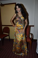 at Love In Cairo film launch in Raheja on 16th Aug 2014 (25)_53f09ab8d16bc.JPG