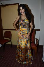 at Love In Cairo film launch in Raheja on 16th Aug 2014 (26)_53f09aba69709.JPG