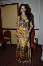 at Love In Cairo film launch in Raheja on 16th Aug 2014 (27)_53f09abd09d1f.JPG