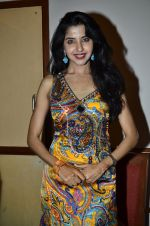 at Love In Cairo film launch in Raheja on 16th Aug 2014 (28)_53f09abe7a1ea.JPG