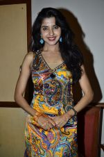 at Love In Cairo film launch in Raheja on 16th Aug 2014 (29)_53f09abfed99a.JPG