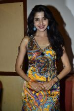at Love In Cairo film launch in Raheja on 16th Aug 2014 (31)_53f09ac37d2d9.JPG
