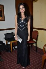 at Love In Cairo film launch in Raheja on 16th Aug 2014 (33)_53f09ac5e89bf.JPG