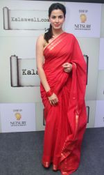 Kirti Kulhari launched the kalamwali.com a world of words on 17th Aug 2014 (1)_53f2f6058316e.JPG
