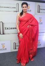 Kirti Kulhari launched the kalamwali.com a world of words on 17th Aug 2014 (2)_53f2f6089c61e.JPG