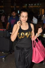 Ameesha Patel snapped at airport as she returns from Bangkok from a ad shoot in mumbai on 20th Aug 2014 (11)_53f5896439cd7.JPG
