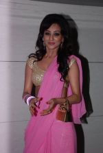 Vedita Pratap Singh at Mumbai 125 Kms bash in Mumbai on 21st Aug 2014 (13)_53f72a96634a1.JPG