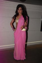 Vedita Pratap Singh at Mumbai 125 Kms bash in Mumbai on 21st Aug 2014 (14)_53f72a97c0f49.JPG