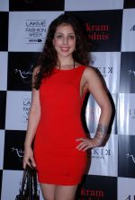 Anisa at Vikram Phadnis bash in Olive on 23rd Aug 2014 (107)_53f9e44e4210d.JPG