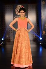 Deeksha Seth at Azva launch in Guhwati on 23rd Aug 2014 (167)_53f9dd20c1e96.JPG