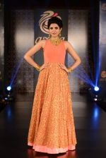 Deeksha Seth at Azva launch in Guhwati on 23rd Aug 2014 (168)_53f9dd21cff1e.JPG