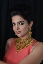 Deeksha Seth at Azva launch in Guhwati on 23rd Aug 2014 (7)_53f9dce82ed35.JPG