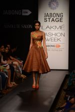 Model walk the ramp for Neha Agarwal at LFW 2014 Day 6 on 24th Aug 2014 (107)_53fc9231e3d92.JPG