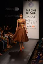 Model walk the ramp for Neha Agarwal at LFW 2014 Day 6 on 24th Aug 2014 (108)_53fc92331095e.JPG