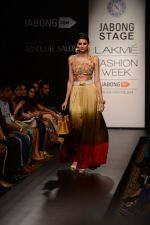 Model walk the ramp for Neha Agarwal at LFW 2014 Day 6 on 24th Aug 2014 (116)_53fc923d97f20.JPG