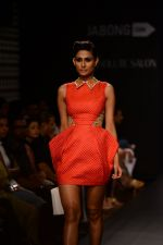 Model walk the ramp for Neha Agarwal at LFW 2014 Day 6 on 24th Aug 2014 (130)_53fc924dc3366.JPG
