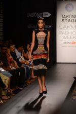 Model walk the ramp for Neha Agarwal at LFW 2014 Day 6 on 24th Aug 2014 (26)_53fc9208ca25d.JPG