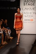 Model walk the ramp for Neha Agarwal at LFW 2014 Day 6 on 24th Aug 2014 (31)_53fc920e6035f.JPG
