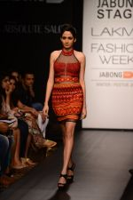 Model walk the ramp for Neha Agarwal at LFW 2014 Day 6 on 24th Aug 2014 (32)_53fc920f7afb1.JPG