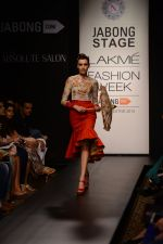 Model walk the ramp for Neha Agarwal at LFW 2014 Day 6 on 24th Aug 2014 (120)_53fc92423af29.JPG