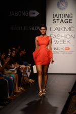 Model walk the ramp for Neha Agarwal at LFW 2014 Day 6 on 24th Aug 2014 (126)_53fc9248dcf45.JPG