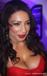 Shanti Dynamite posing at the first look launch of the movie _I Love Dubai__004 (3)_5407f57e11d8d.JPG