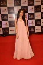 Hunar Hali at Indian Telly Awards in Filmcity, Mumbai on 9th Sept 2014 (284)_541007e893418.JPG