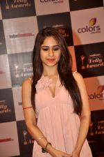 Hunar Hali at Indian Telly Awards in Filmcity, Mumbai on 9th Sept 2014 (285)_541007e9e6f3c.JPG