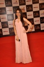 Hunar Hali at Indian Telly Awards in Filmcity, Mumbai on 9th Sept 2014 (289)_541007ef7b573.JPG