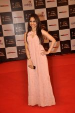 Hunar Hali at Indian Telly Awards in Filmcity, Mumbai on 9th Sept 2014 (290)_541007f0dfb86.JPG