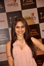 Hunar Hali at Indian Telly Awards in Filmcity, Mumbai on 9th Sept 2014 (291)_541007f24e4af.JPG