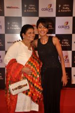 Nigaar Khan at Indian Telly Awards in Filmcity, Mumbai on 9th Sept 2014 (475)_5410087c3aa48.JPG