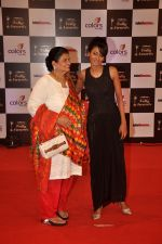 Nigaar Khan at Indian Telly Awards in Filmcity, Mumbai on 9th Sept 2014 (476)_5410087dba2e9.JPG