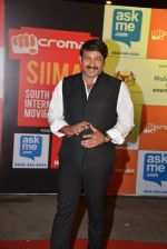 Manoj Tiwari on day 2 of Micromax SIIMA Awards red carpet on 13th Sept 2014 (232)_541543ea71e2c.JPG