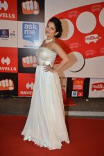 on day 2 of Micromax SIIMA Awards red carpet on 13th Sept 2014 (1220)_54154992efb60.JPG