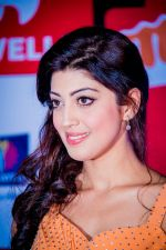 at Micromax SIIMA 2014 on 12th Sept 2014 (15)_54168b2dae2a0.jpg