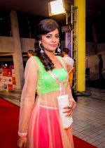 at Micromax SIIMA 2014 on 12th Sept 2014 (70)_54168b84adc39.jpg