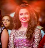 at Micromax SIIMA 2014 on 12th Sept 2014 (81)_54168b948b28a.jpg
